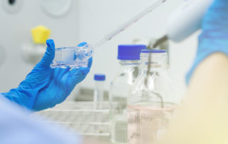 Job vacancy for a Cell Culture Scientist